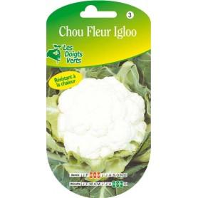 Chou fleur igloo