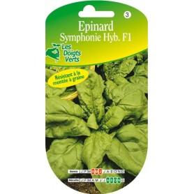 Epinard symphonie hyb. F1