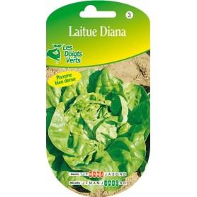 Laitue Diana