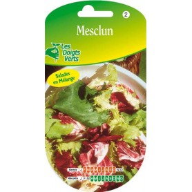 Mesclum