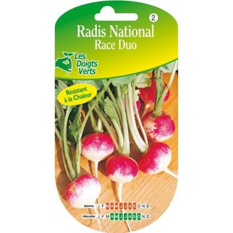 Radis National race duo