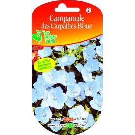 Campanule Des Carpathes Bleue