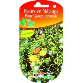 Fleurs en Mélange Pour Gazon Japonais