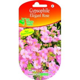 Gypsophile Elégant Rose
