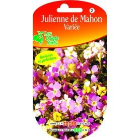 Julienne De Mahon Variée