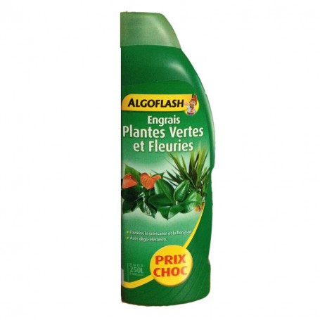 Code promo algoflash bons et codes de r ductions algoflash for Plantes vertes discount