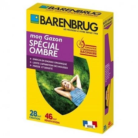 Gazon spécial ombre 1Kg Barenbrug