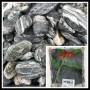 Gravier Anatola Green 25/50mm 20kg 14.95€