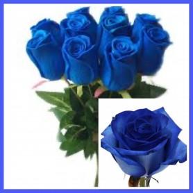 Roses Bleues à la tiges 1,95€ FC