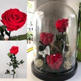 Composition de 3 roses Rouge Stabilisées 39,95€