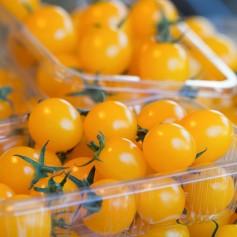 Plant de tomate cerise jaune 1,45€