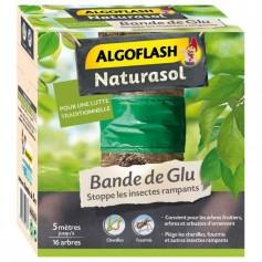 Bande de Glu 5m Algoflash