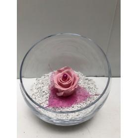 Coupe 1 Rose Rose Éternelle ( Stabilisée ) 14.95€