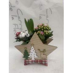 Composition jacinthe et kalanchoe étoile bois 9,95€