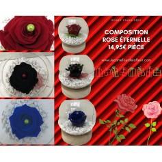 Rose Éternelle Bleue dans son pot rond 14.95€