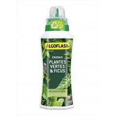 Engrais Plantes vertes et Ficus 500ml Algoflash