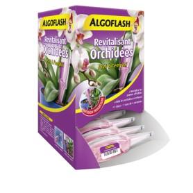 Doses revitalisantes Orchidées Algoflash