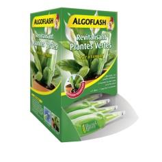 Doses Revitalisantes Plantes Vertes et Plantes Fleuries