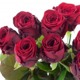 Botte de roses rouge 40cm 7,95€