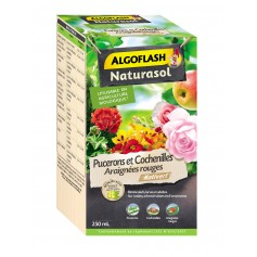 Insecticide Pucerons et Cochenilles 250ml Algoflash