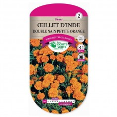 OEillet D'inde Double Nain Petite Orange