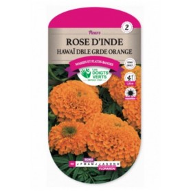 Rose d'inde HawaÏ Double Grande Orange