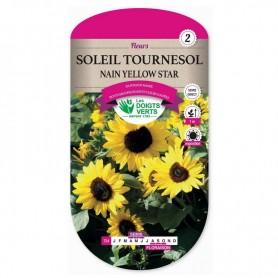 Soleil Tournesol Nain Yellow Star