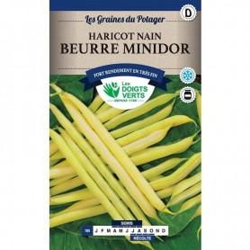 Haricot Beurre Minidor