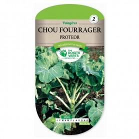 Chou Fourrager
