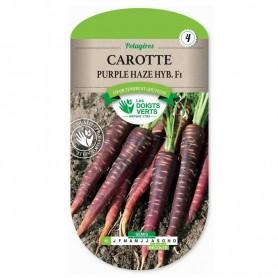 Carotte Purple Haze Hyb. Fi