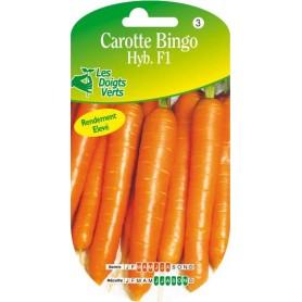 carotte bingo