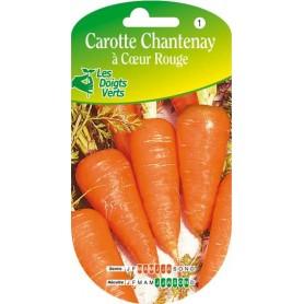 carotte chamtenay