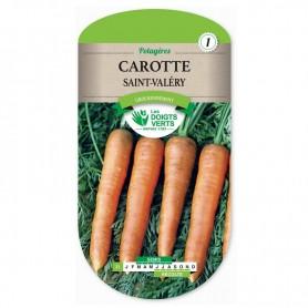 carotte saint-valéry