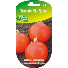 tomate st-pierre