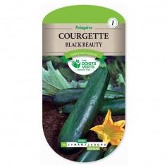 Courgette black beauty