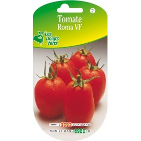 tomate roma vf