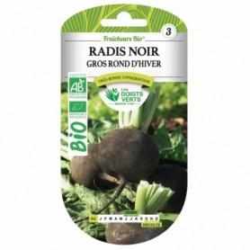 Radis Noire Gros Rond D'Hiver