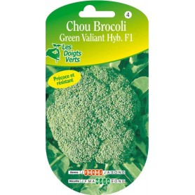 Chou brocoli green valiant hyb. F1