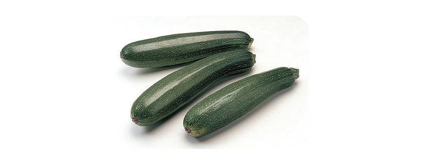 Courges/Courgettes